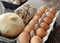 onion, meadow mushrooms & eggs