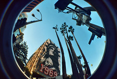 1969 (lefeber) Tags: california 1969 film sign architecture liberty trafficlight la vanishingpoint losangeles lomo lomography streetlight fisheye palmtrees plus statueofliberty westwood wilshire westwoodvillage civilrightsact