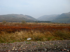 Train to Borth, West Wales, 03/04/2009 (DG Jones) Tags: nature misty train westwales reserve unesco peat naturereserve valley moor bog mire dyfiestuary peatland borthbog corsfochno raisedbog journe dyfinationalnaturereserve