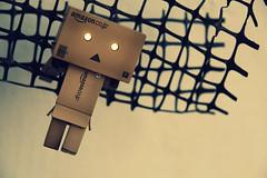 help me! (muflena) Tags: danbo danboard