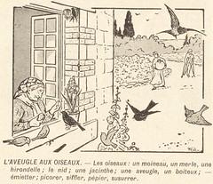 aveugle aux oiseaux