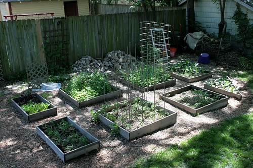 Vegetable Garden, May 2009