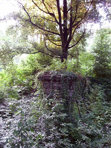 cascine di Tavola_il ponte dell'ombrellino