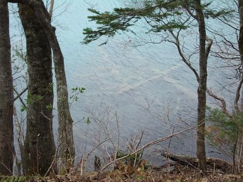 密湖 (1).JPG