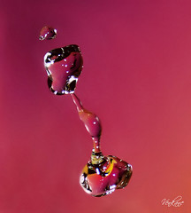 Nevena Uzurov- Pink one (Nevena Uzurov) Tags: light abstract color reflection wet closeup reflections droplets drops colorful action patterns serbia drop drip refraction droplet splash waterdrops liquid tab refractions vojvodina srbija  nevena sremskamitrovica srem   venkane    nevenauzurov