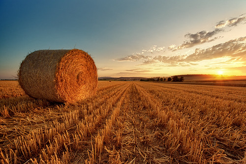 Bale Of Straw during sunset by Philipp Klinger