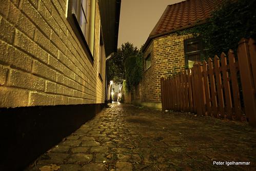 nattphotowalk 067
