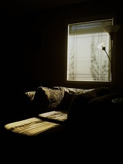A touch of blue sky (peggyhr) Tags: blue light sky sunlight white canada black window lines chair edmonton shadows branches olive alberta venetianblinds cushions standlamp peaceaward peggyhr flickrbronzeaward thebeautifulimagetop 100commentgroup passionforlight flickraward pegasusaward artnetcontemporaryartist mygearandme artwithoutend lomejordemisamigos nossasvidasnossomundoourlifeourworld avpa1maingroup chariotsofartists thethreeangelslevel1blueangel tennerkasmasterpieces p1290659a