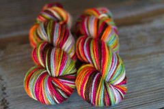 'ellie's rainbow' on Rodeo BFL
