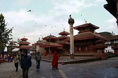 03 (- nastar -) Tags: nepal elephant kathmandu pokhara chitwan sarangkot