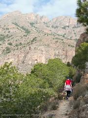 Sendero Pico Del Aguila (Foto_Seb)_20090301-095856 (Reiguero de Levante, Valencian Community, Spain) Photo