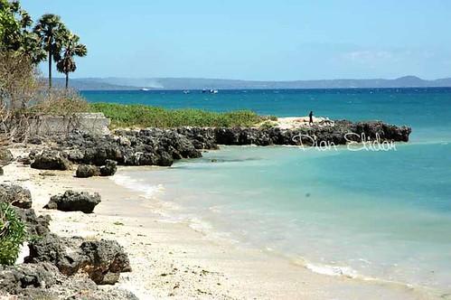 kupang beach-Indonesia