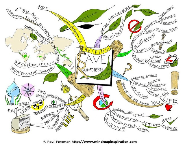 Helping Save Rainforests Mind Map