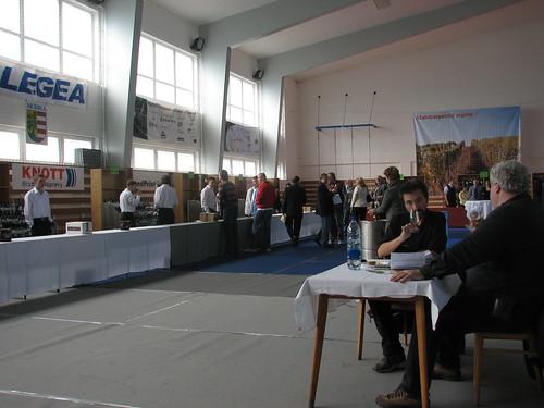 Vitis Aurea 2009