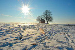 a sunny winter sunday snow, chapel and tree shot (Werner Schnell Images (2.stream)) Tags: winter snow sunday sunny chapel werner ws schnell wernerschnell wernerschnellimages