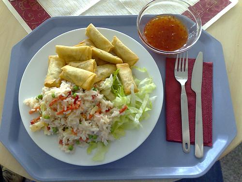 Frühlingsrollen mit Reissalat