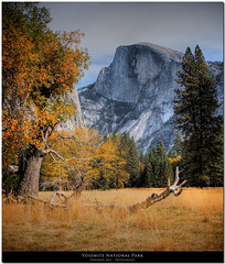Half Dome watches Yosemite valley turn through Autumn to Winter (Don J Schulte) Tags: ca autumn mountains color fall nature nationalpark aperture hiking hike sierra worldheritagesite yosemite granite halfdome yosemitenationalpark muir hdr johnmuir usnationalpark photomatix tonemapped 1exp singlehdr goldstaraward flickrclassique oxherder