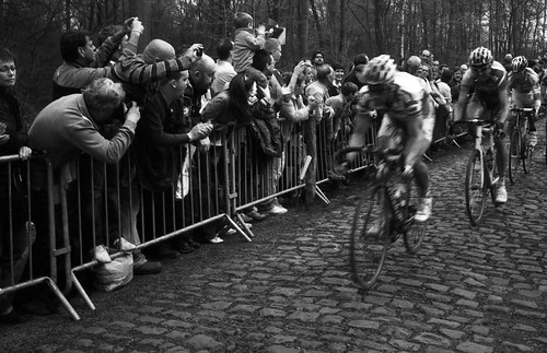 Riders in the 2009 Paris-Roubaix enter the feared Arenberg Forest. Photo: Walter Bendix Schönflies