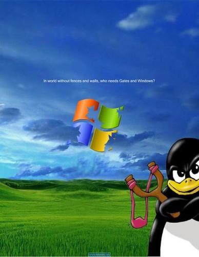 linux-vs-windows.jpg