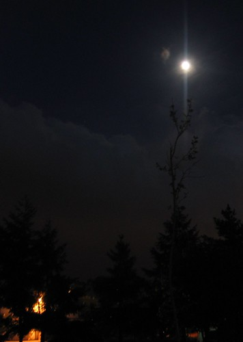Moon over Kirkland