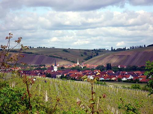 Nordheim-Escherndorf