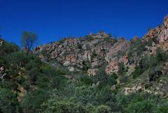 Pinnacles 2009 023
