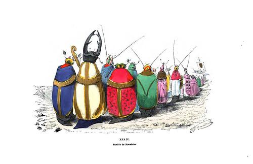 012-Les métamorphoses du jour (1869)-J.J Grandville