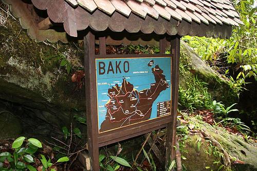 Bako Trails