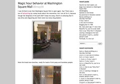 Magic hour behavior at Washington Square Mall « Beth's blog_1242985528557