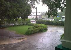 Rainy Day at School (Owen P.) Tags: road blue light house tree green grass rain dark bench hole post flood quality branches small pole beam jamaica hedge gravel academics
