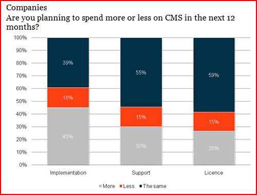 CMS Survey - Econsultancy 2009