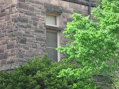 Foellinger Auditorium (dreamofdata) Tags: trees brown building brick green campus spring universityofillinois uiuc altgeldhall altgeld urbanachampaign
