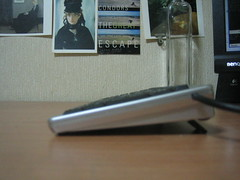 IMG_6551