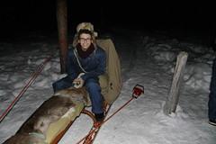 Dog Sled (brrrandonmitchell) Tags: camp dog ice circle reindeer hotel sweden lappland arctic sledding alta kiruna snowmobiling jukkasjrviicehotel
