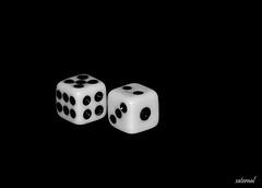 Just mind games (explored) (saternal) Tags: blackandwhite bw white dice black game blackwhite games karma mindgames aplusphoto ericberne saternal grouptripod