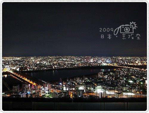 空中觀景台 (5)