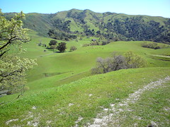 DSC00056 (Scotts Corner, California, United States) Photo