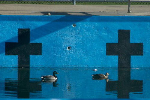 Valois Pool Ducks