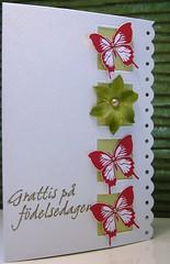 Happy Birthday (Elin A) Tags: mayflowers cl115 2009catalog