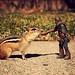 Let's Be Friends par powerpig