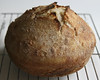 Volcanic No Knead Bread