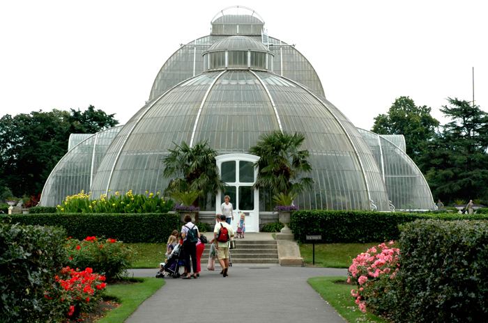 The Palm House :: Click for previous