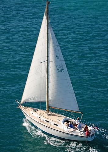 ocean city sea urban beach water sailboat bay boat downtown sailing waterfront florida yacht miami south central sails atlantic boating sail fl fla southbeach biscayne dade