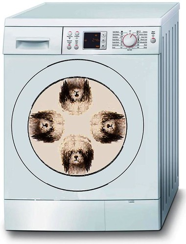 Automatic Dog Washer