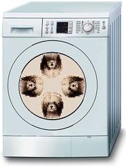 pets dogs humor washingmachine doggrooming dogshampoo mikelicht notionscapitalcom dog'omatic