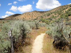 Trail at Polecat Gulch Photo