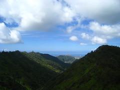 Palolo Hike, Oahu (steffengo) Tags: green water forest hawaii climb waterfall stream oahu ethan rope hike falls sweaty pools jungle tired steffen palolo kaaucrater