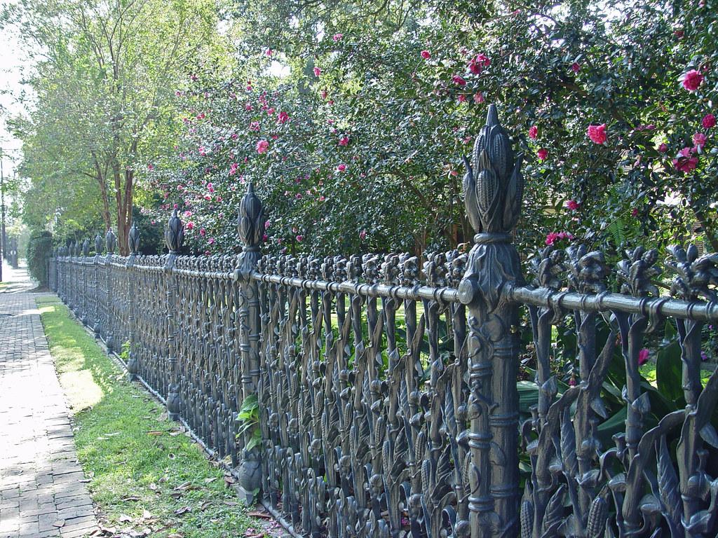 DSC02540 cornstalk fence