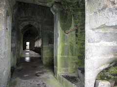 IMG_1751.JPG (jeffc5000) Tags: ireland abbey quin coclare
