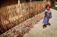 DSC_2010 (highlights.photo) Tags: travel people landscape asia philippines culture cebu filipino filipina visayas filipiniana
